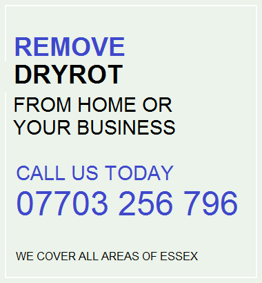 Dry Rot Shenfield | Dry Rot Treatments Shenfield